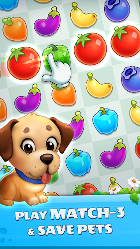 Pet Savers 1.5.6 MOD (Unlimited Coins) 5