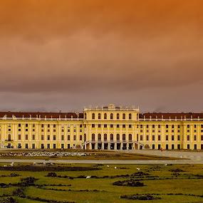 Schönbrunn Palace by Arda Erlik - Buildings & Architecture Public & Historical ( vienna, travel, architecture, palace, austria, city )