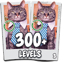 Find the difference 300 level Spot the differences APK