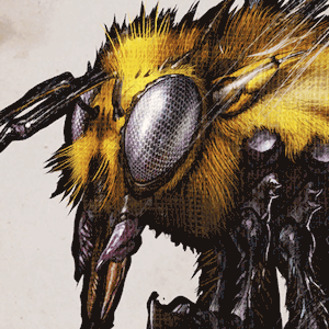 イキオオミツバチ