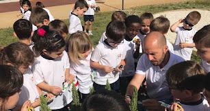 Actividades al aire libre enriquecen el día a día de los alumnos, que disfrutan de las magníficas instalaciones de las que dispone el centro.