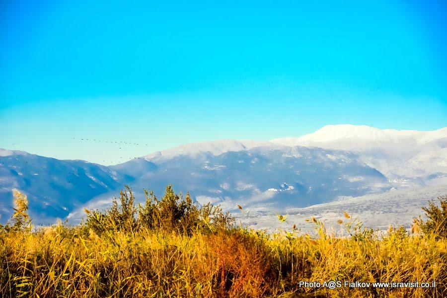 Долина Хула в Верхней Галилее. Вид на гору Хермон. Экскурсия в заповедник птиц. Израиль.