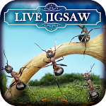Live Jigsaws - Ant Farm