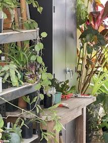 Gardening Australia- screenshot thumbnail