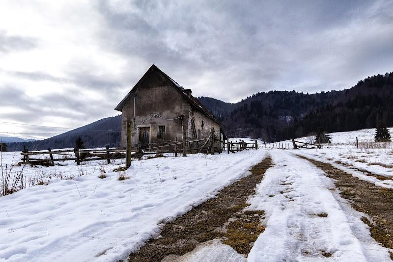 La montagna in solitudine  di Sara_V_98