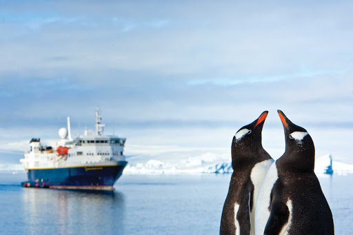 Watch gentoo penguins close up during a Lindblad expedition to Antarctica.