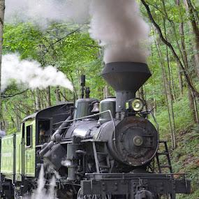 by David Stemple - Transportation Trains (  )