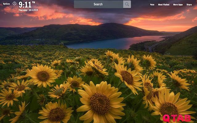 Sunflower Field New Tab Wallpapers