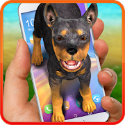 Dog on screen – doberman. Prank app.