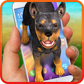 Dog on screen – doberman. Prank app.