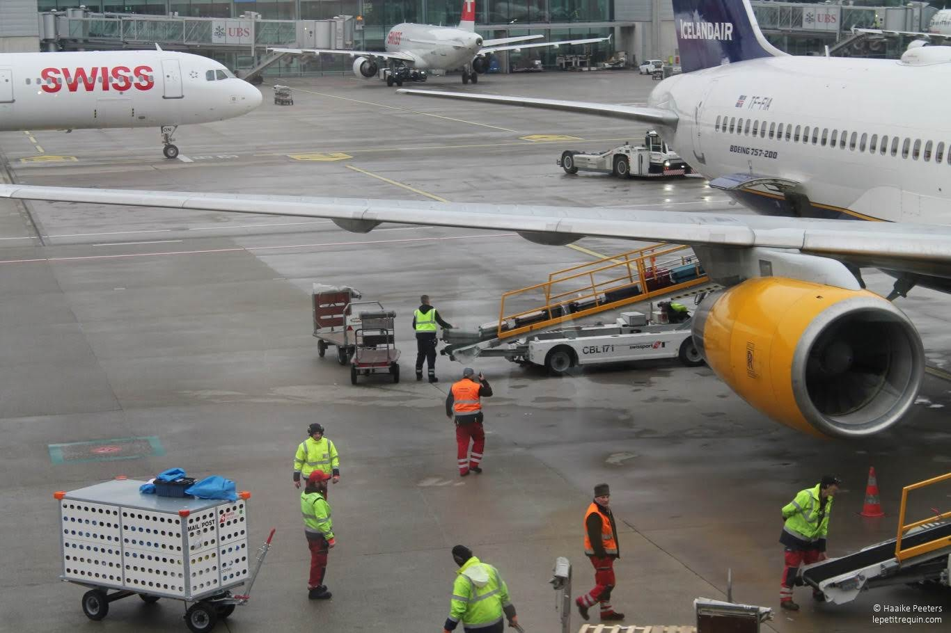 Flughafen Zürich (Le petit requin)
