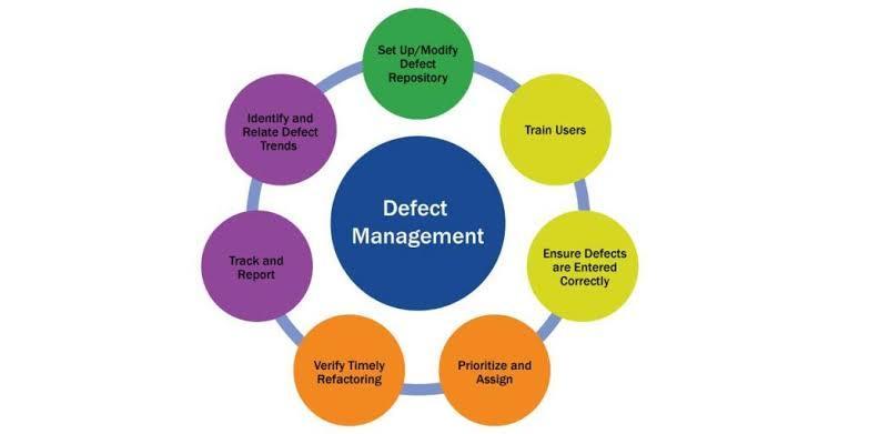 Software Defect Report
