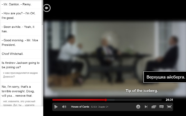 Netflix Subtitles Translator