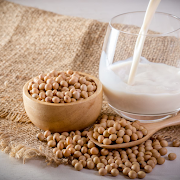 Soy Milk 纯豆浆