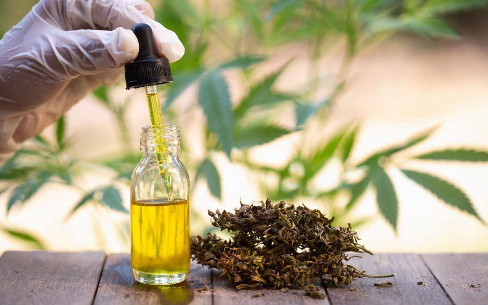 Full-Extract-Cannabis-Oil.jpg