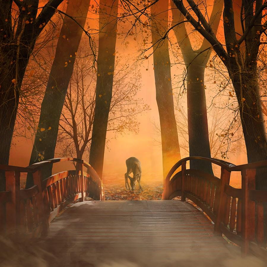 Bambi by Caras Ionut - Digital Art Places ( http://www.carasdesign.ro/tutorials )