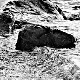 Lake Waves by Lauren Ann - Black & White Landscapes ( black and white, lake, rocks,  )