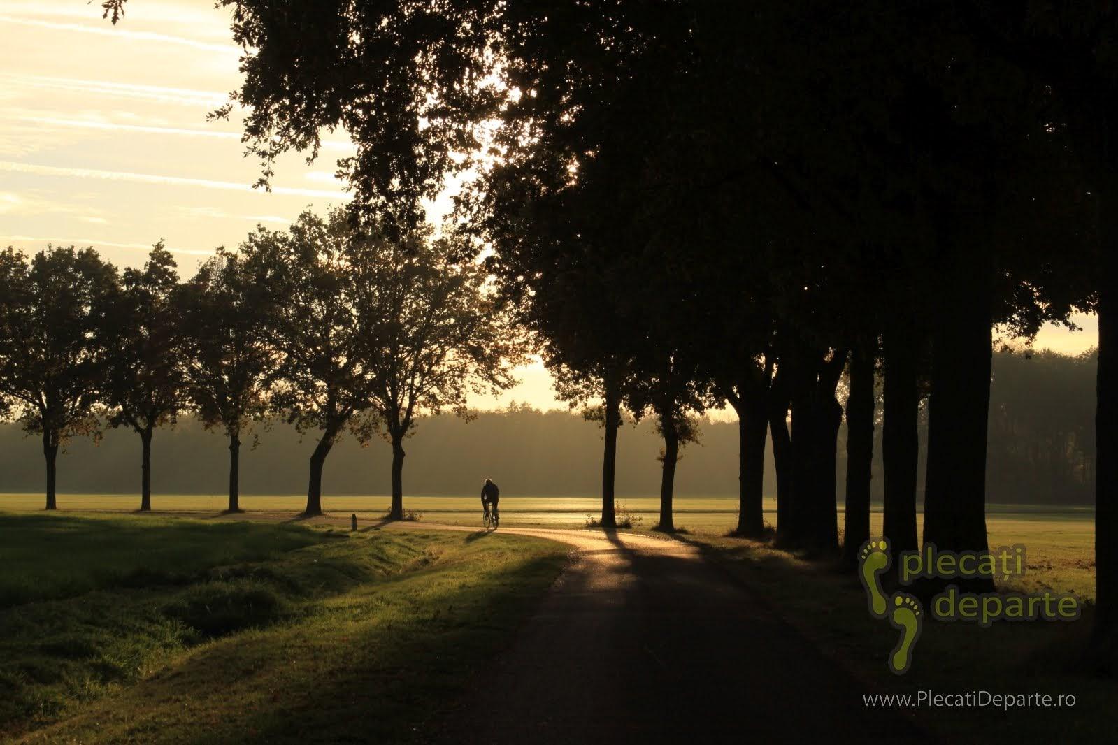 plimbare cu bicicleta pe langa Eindhoven, Olanda