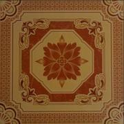 Ceramic Floor Ideas