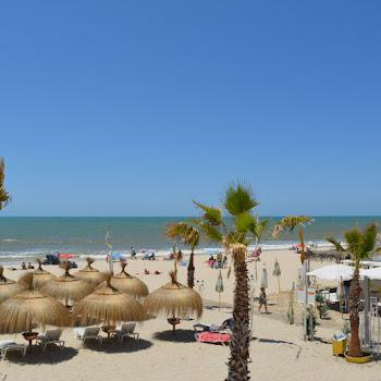 hamacs de vent sur la plage