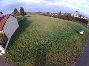 terrain à Montpont-en-Bresse (71)