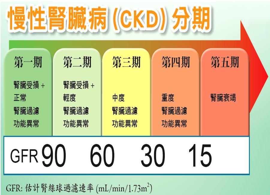 七項重大疾病分析:慢性腎衰竭(尿毒癥) @ 淺談保險觀念 :: 痞客邦