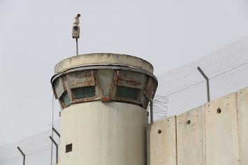 palestine-3152791_1280.jpg