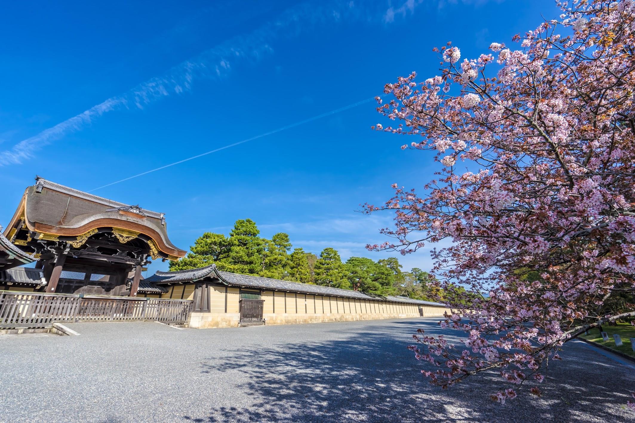 Kyoto gyoen4