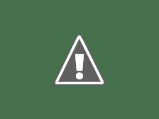 HERNANDO: MESAS DE VOTACIÓN