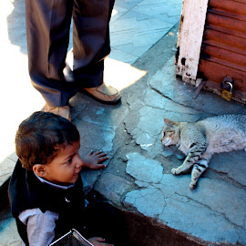 shall i wake him by Vivek Anandhan - Animals - Cats Kittens ( asleep, kitten, cat, people, kid,  )