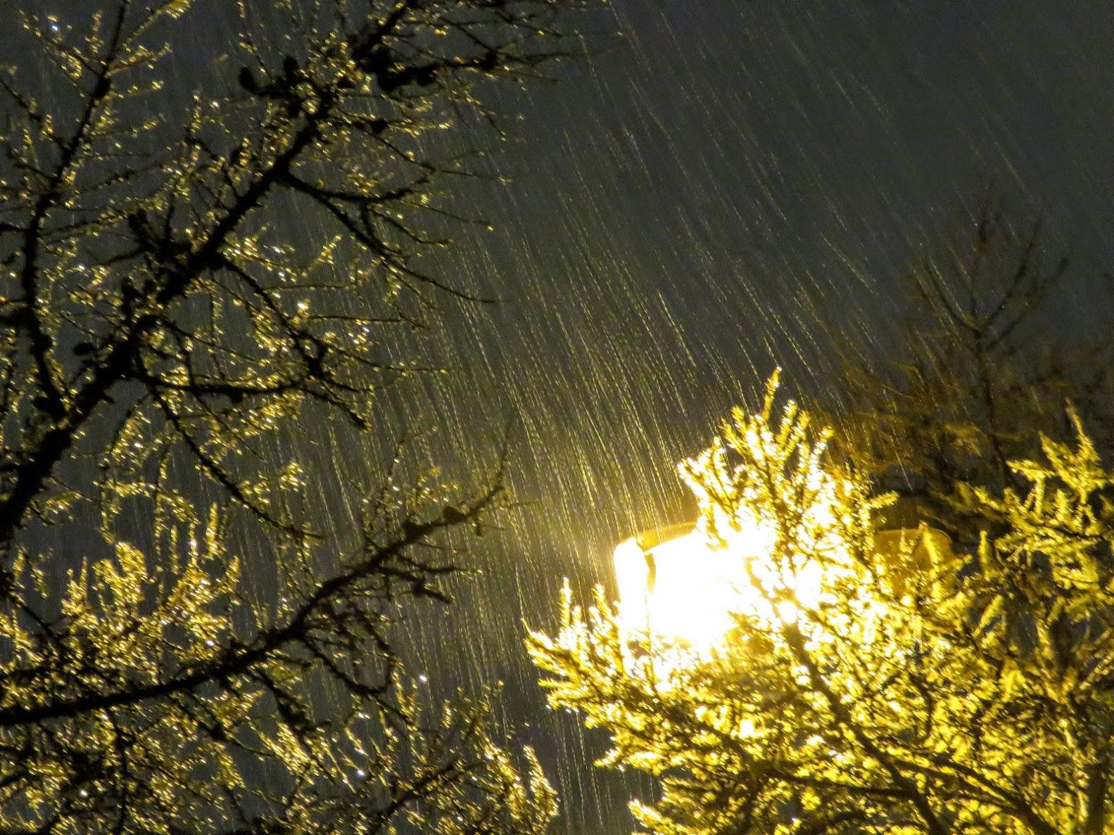 Погода на 10 дней в немирове винницкой области на 10 дней