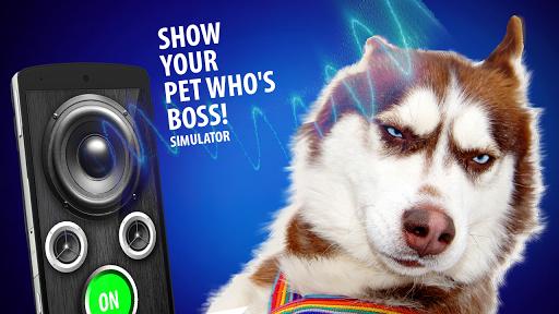 宠物吓坏的模拟器