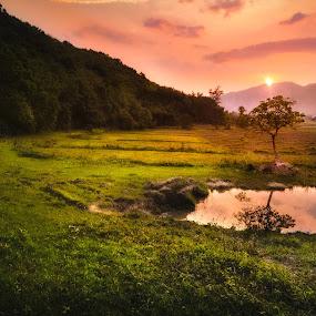 the golden kiss. by Arubam Meitei - Landscapes Prairies, Meadows & Fields ( reflection, nature, golden hour, sunset, landscape )