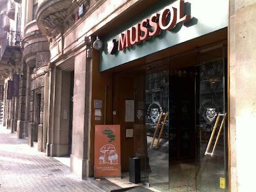 Photo El Mussol
