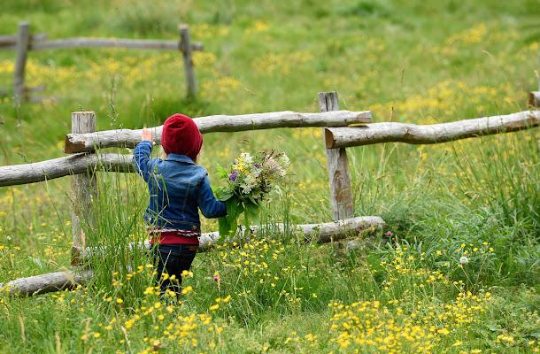 Tenera primavera .. di Giancarlo Lava