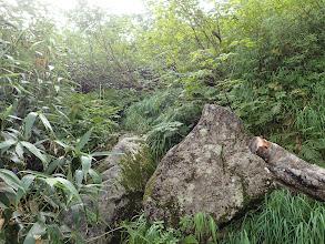 石の多い涸れ沢を登る