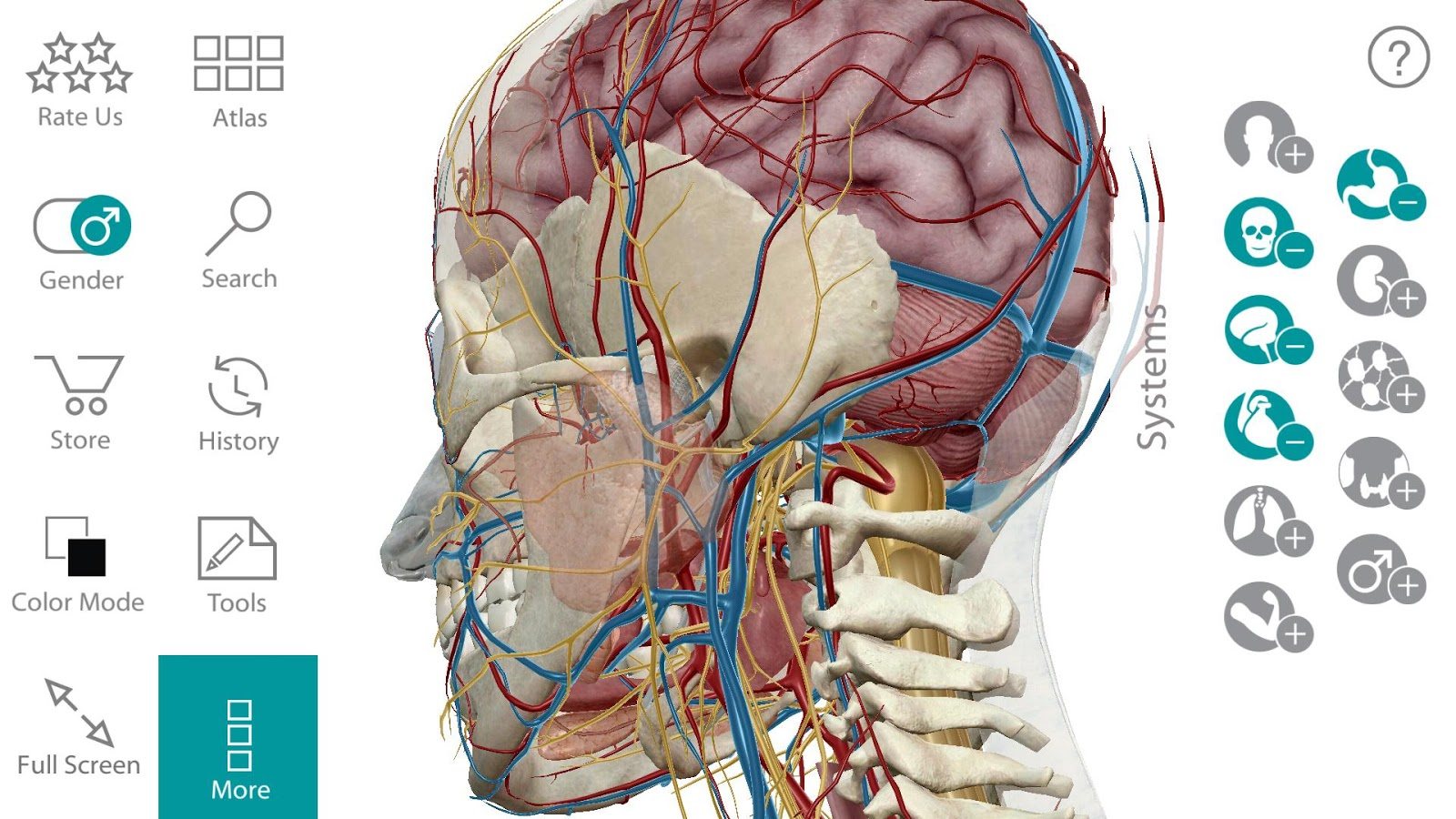 Human anatomy atlas screenshot