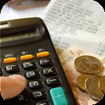 Simulation crédit impôts Icon