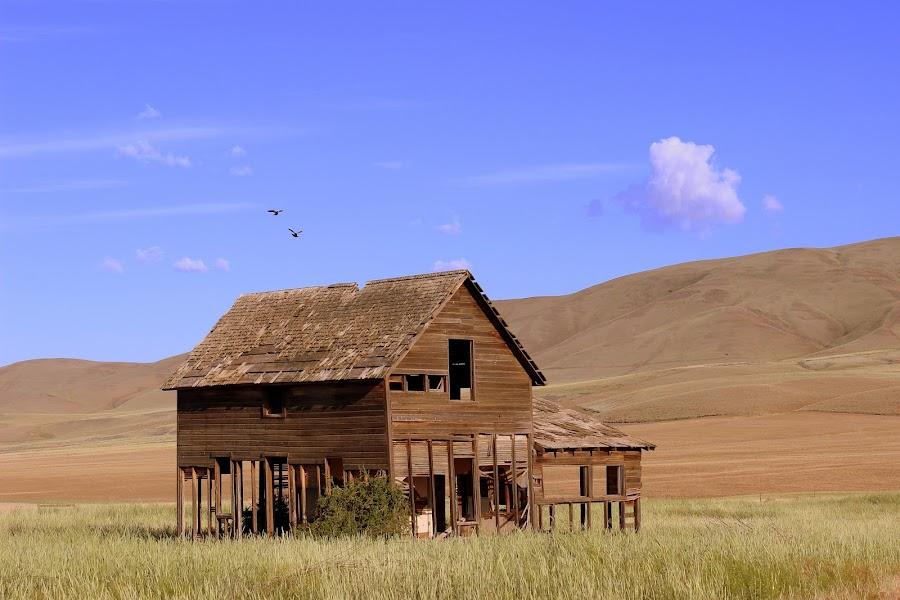 The House by Sayandev Chatterjee - Buildings & Architecture Decaying & Abandoned ( sky, nature, barn, blue, serenity,  )