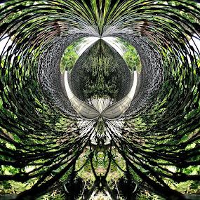 Nets by Dedi Sukardi - Abstract Patterns