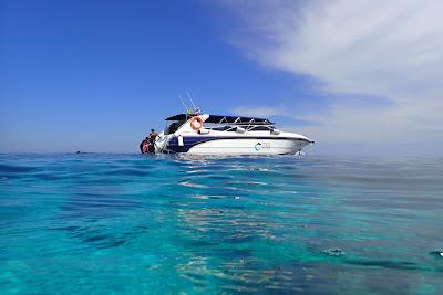 Tin Adventure Sea Tour to Koh Rok from Koh Lanta