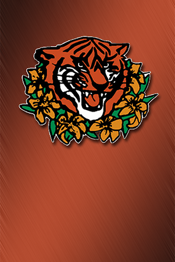 Princeton Tigerlilies