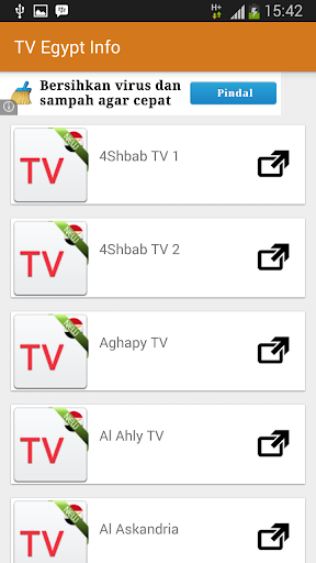 New TV Egypt Online 2