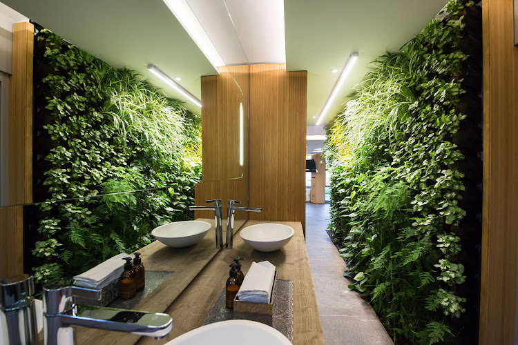 Somerset West by Living Green Walls
