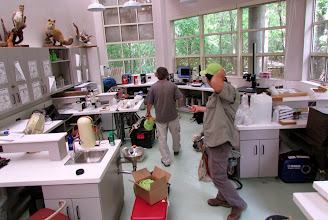 Photo: Setting up the lab space.