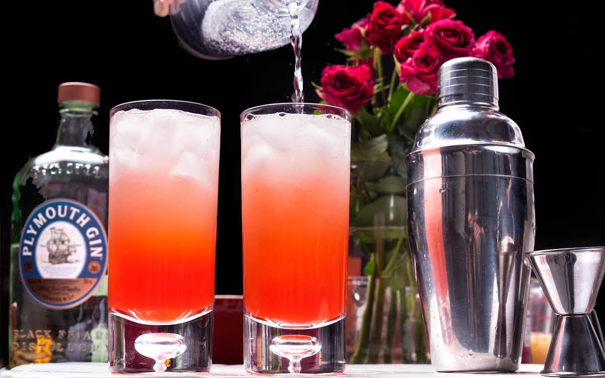 Pink Gin Fizz Recipe