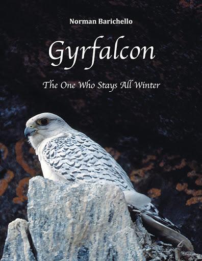 Gyrfalcon cover