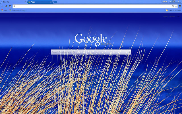 beach blue theme for chrome this theme is free to download comes with free lifetime updates chrome themes