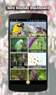 75 ptačích zvuků - náhled