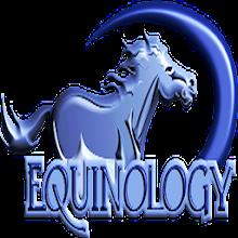 Equine Anatomy Learning Aid (EALA) Download on Windows